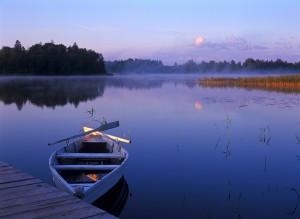 calming landscape 7